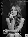 Vixen Calendar for January 2014